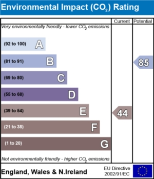 Environmental Impact (CO2) Report  - currently 44 and could be 85
