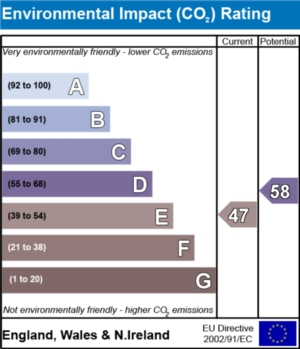 Environmental Impact (CO2) Report  - currently 47 and could be 58