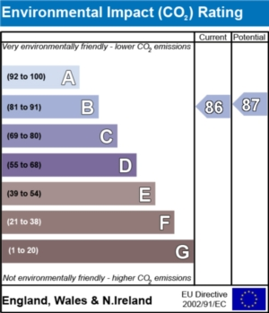 Environmental Impact (CO2) Report  - currently 86 and could be 87