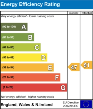 Energy Efficiency Report - currently 47 and could be 51