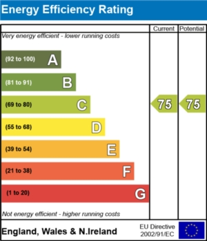 Energy Efficiency Report - currently 75 and could be 75