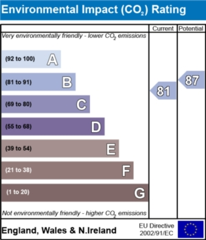 Environmental Impact (CO2) Report - currently 81 and could be 87